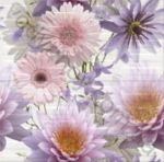 Композиция панно OPOCZNO Chinese Asters multicolor inserto flower 59.4 x 60  комплект 2 шт